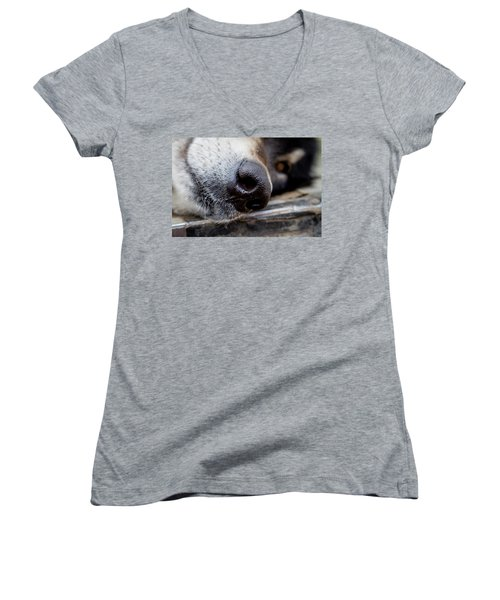 Women's V-Neck T-Shirt (Junior Cut) featuring the photograph Gray Wolf Nose by Teri Virbickis