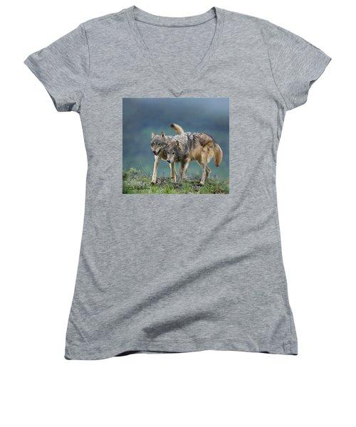 Gray Wolves Women's V-Neck T-Shirt (Junior Cut) by Tim Fitzharris