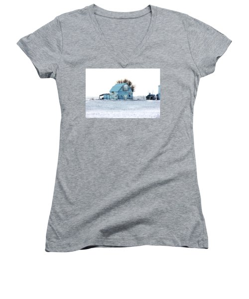 Women's V-Neck T-Shirt (Junior Cut) featuring the photograph Grays by Julie Hamilton