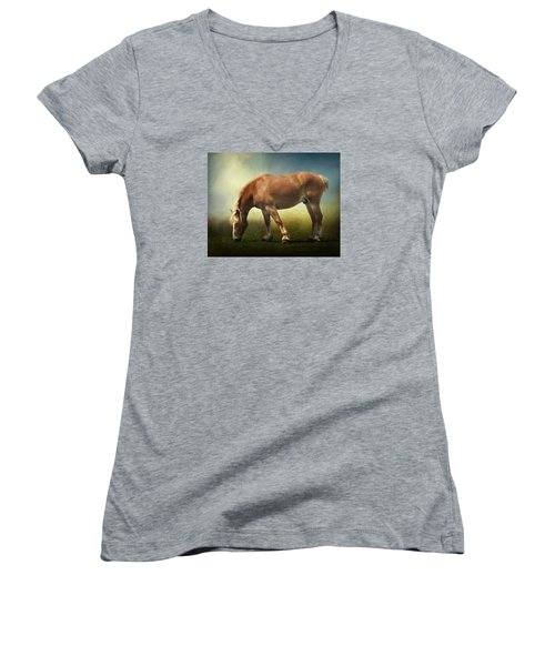 Grazing Belgian Women's V-Neck T-Shirt (Junior Cut) by David and Carol Kelly
