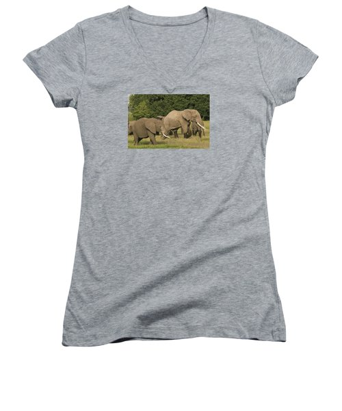 Women's V-Neck T-Shirt (Junior Cut) featuring the photograph Grazing Elephants by Gary Hall
