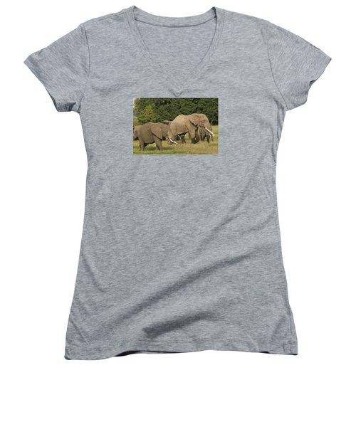 Grazing Elephants Women's V-Neck T-Shirt (Junior Cut) by Gary Hall