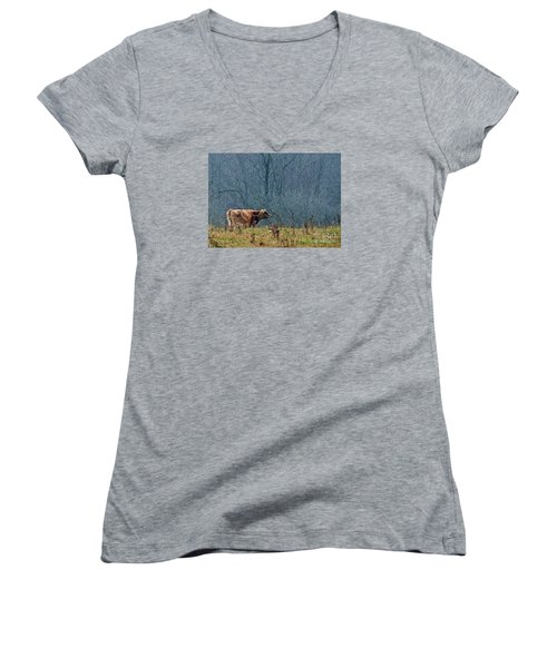 Women's V-Neck T-Shirt (Junior Cut) featuring the photograph Grazing In Winter by Christian Mattison