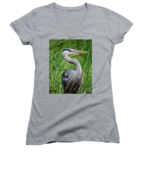 Great Blue Heron Close-up Women's V-Neck T-Shirt