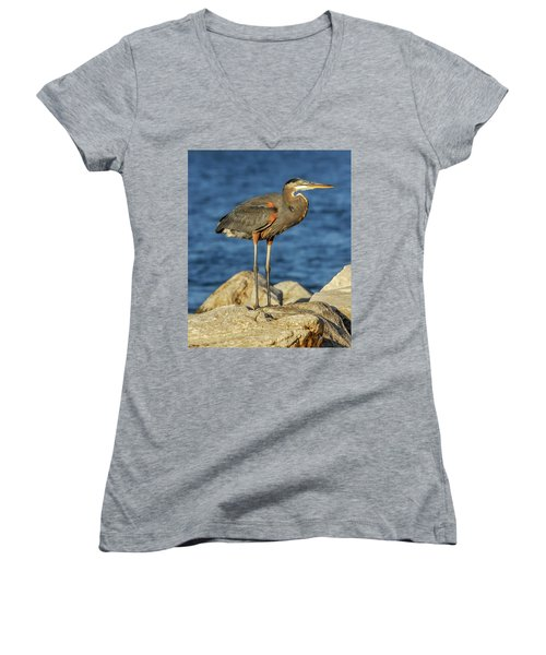 Great Blue Heron On Rock Women's V-Neck