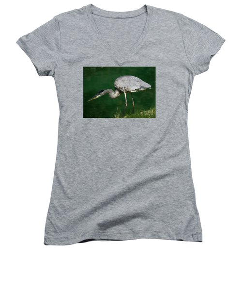 Great Blue Heron Series Women's V-Neck (Athletic Fit)