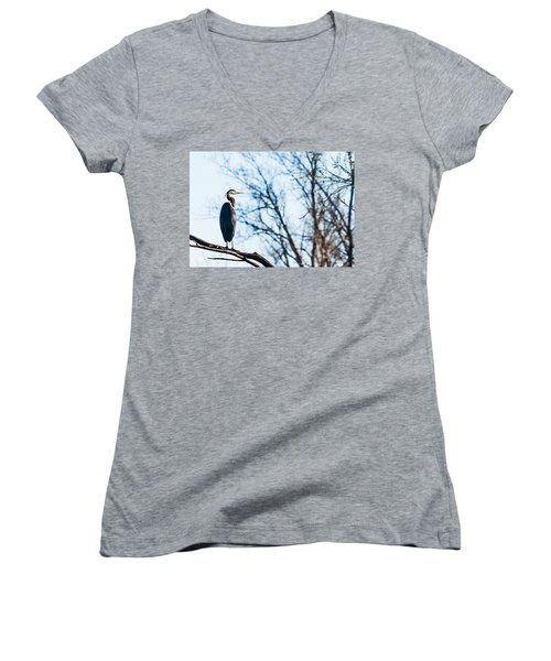 Great Blue Heron Sitting In A Tree Women's V-Neck T-Shirt (Junior Cut) by Edward Peterson