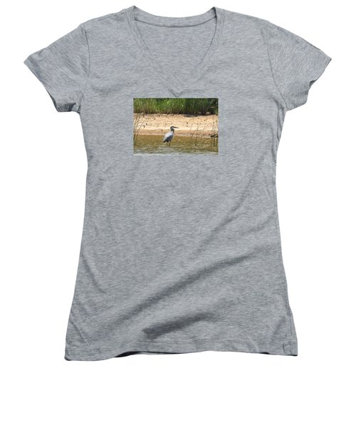 Women's V-Neck T-Shirt (Junior Cut) featuring the photograph Great Blue Heron Wading by Sheila Brown