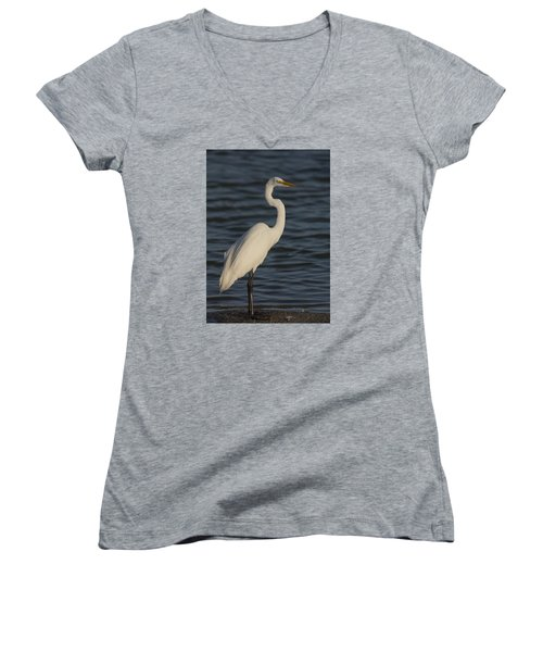 Great Egret In The Last Light Of The Day Women's V-Neck T-Shirt