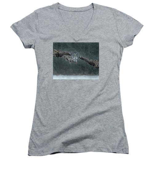 Great Gray Wintery Flight Women's V-Neck (Athletic Fit)
