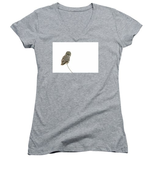 Women's V-Neck T-Shirt (Junior Cut) featuring the photograph Great Grey Owl On White by Mircea Costina Photography