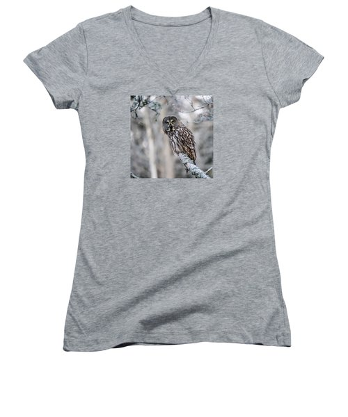 Great Grey Owl Women's V-Neck (Athletic Fit)