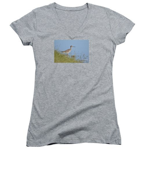 Greater Yellowlegs Women's V-Neck T-Shirt (Junior Cut) by Kathy Gibbons