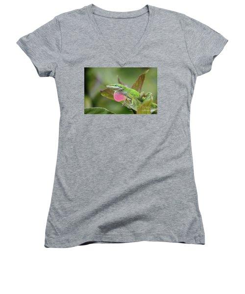 Green Anole Women's V-Neck T-Shirt (Junior Cut) by Terri Mills