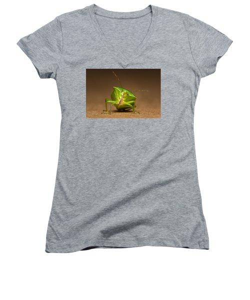 Green Bug Women's V-Neck T-Shirt