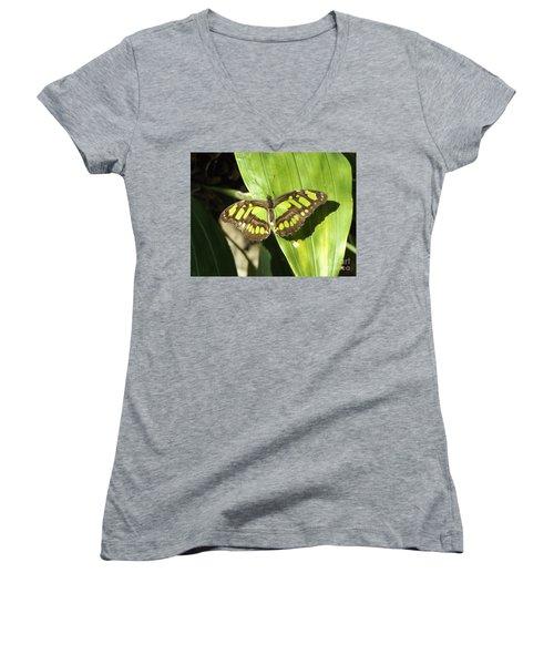 Green Butterfly Women's V-Neck T-Shirt
