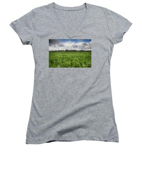 Green Fields 4 Women's V-Neck T-Shirt (Junior Cut) by Douglas Barnard