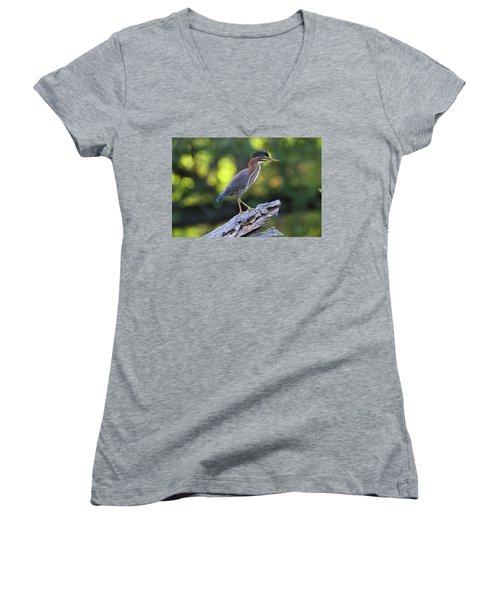 Green Heron Stump Women's V-Neck T-Shirt
