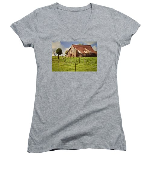 Green Pastures Women's V-Neck T-Shirt (Junior Cut) by Lana Trussell