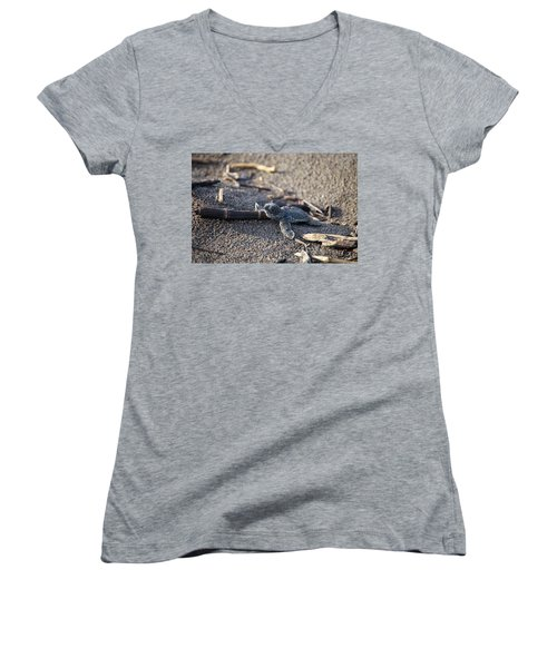 Women's V-Neck T-Shirt (Junior Cut) featuring the photograph Green Sea Turtle Hatchling by Breck Bartholomew