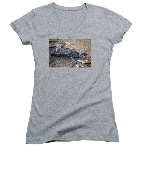 Green Sea Turtle Hatchling Women's V-Neck T-Shirt