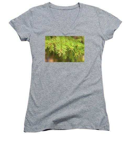 Green Spruce Branch Women's V-Neck T-Shirt (Junior Cut) by Anton Kalinichev