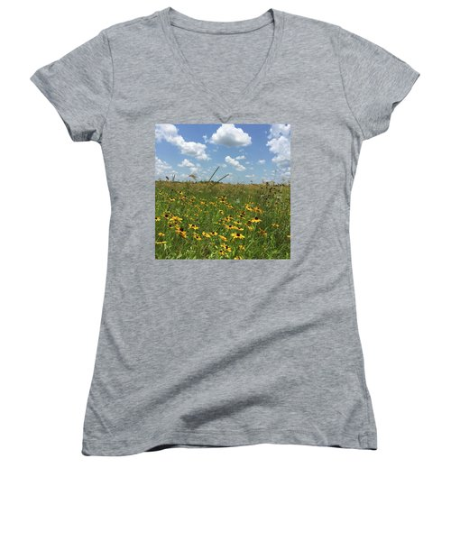 Greener Pastures In Heaven Women's V-Neck