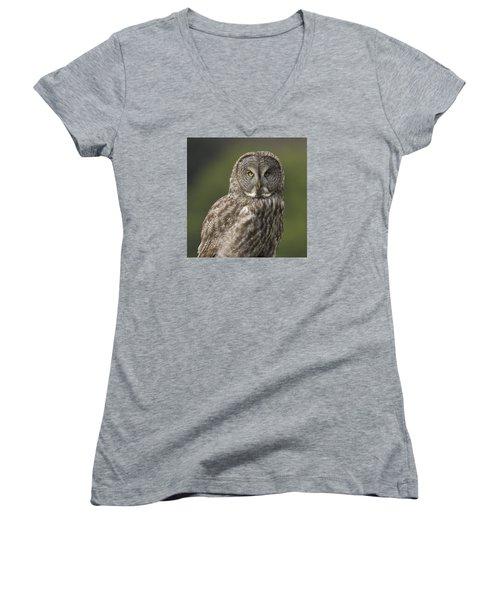 Great Gray Owl Portrait Women's V-Neck T-Shirt (Junior Cut) by Doug Herr