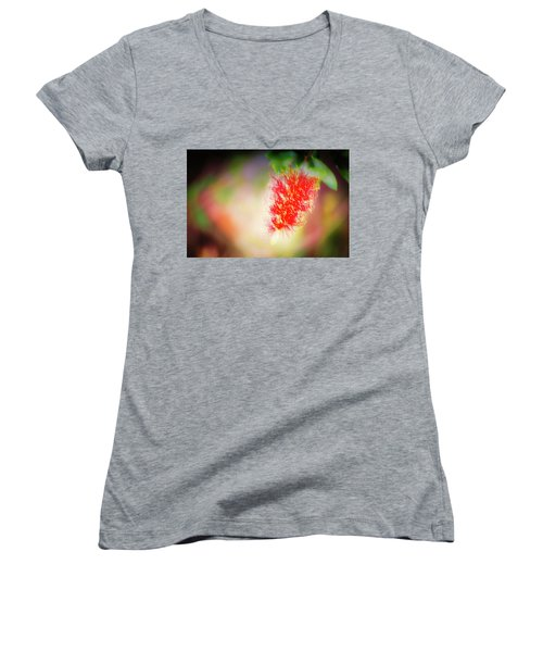 Grevillea Dream Women's V-Neck T-Shirt