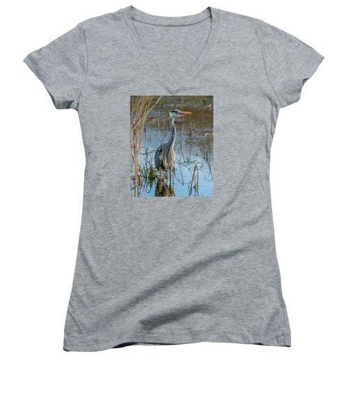 Grey Heron Hunting Women's V-Neck (Athletic Fit)
