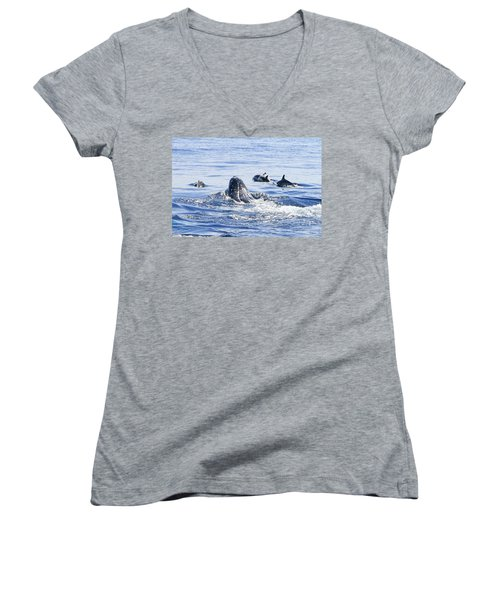 Grey Whale 1 Women's V-Neck (Athletic Fit)