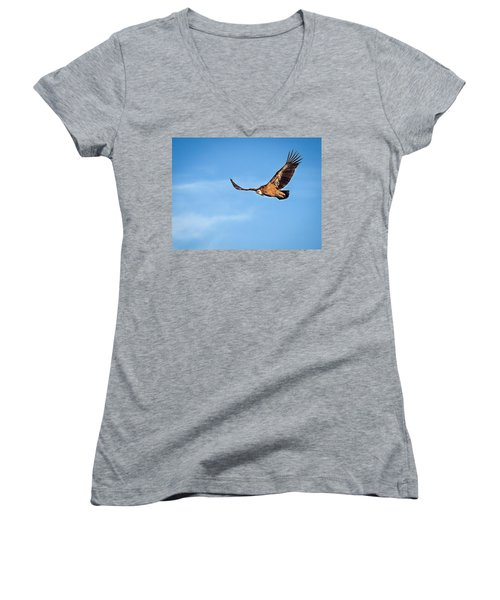 Women's V-Neck T-Shirt (Junior Cut) featuring the photograph Griffon Vulture by Meir Ezrachi