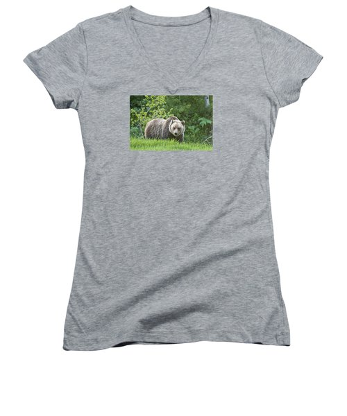 Women's V-Neck T-Shirt (Junior Cut) featuring the photograph Grizzly Bear by Gary Lengyel