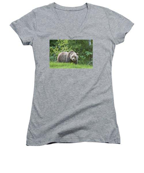 Grizzly Bear Women's V-Neck