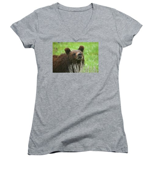 Women's V-Neck T-Shirt (Junior Cut) featuring the photograph Grizzly Cub by Steve Stuller