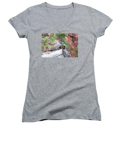 Groundhog On A Log Women's V-Neck T-Shirt