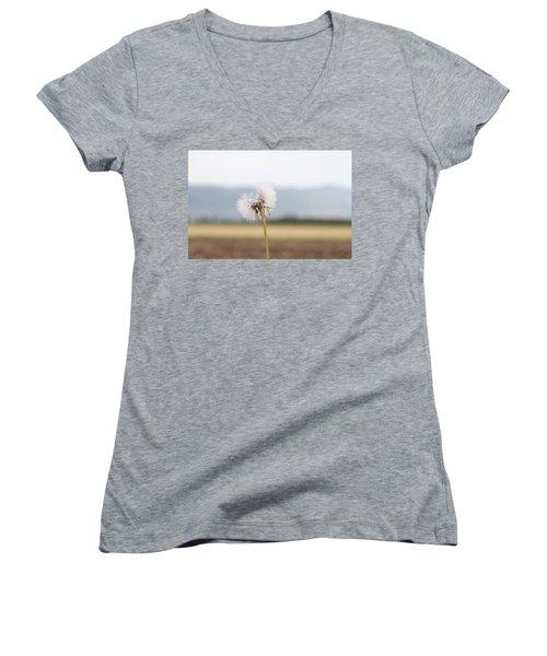 Groundsel In The Wind Women's V-Neck T-Shirt (Junior Cut) by Yoel Koskas