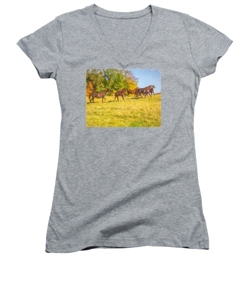 Group Of Morgan Horses Trotting Through Autumn Pasture. Women's V-Neck (Athletic Fit)