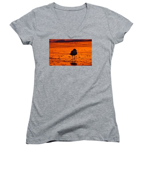 Gull Caught At Sunrise Women's V-Neck T-Shirt (Junior Cut) by Allan Levin