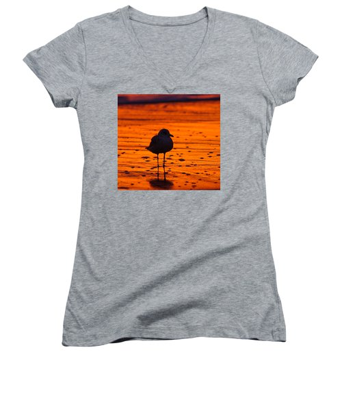 Gull Caught At Sunrise Women's V-Neck (Athletic Fit)