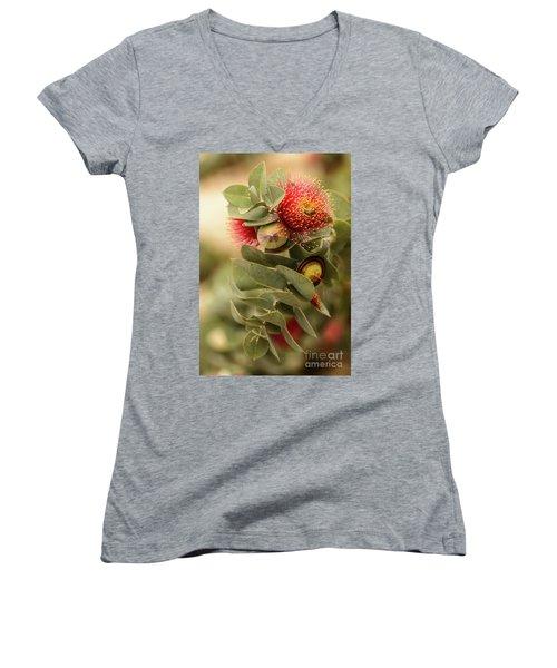 Gum Nuts Women's V-Neck T-Shirt (Junior Cut)