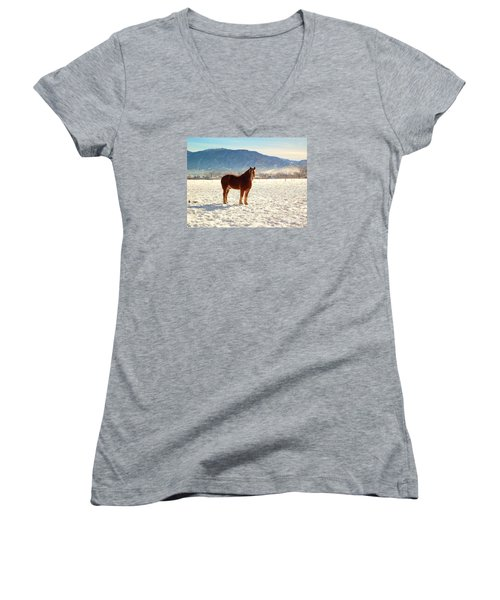 Women's V-Neck T-Shirt (Junior Cut) featuring the photograph Gus by Deborah Moen