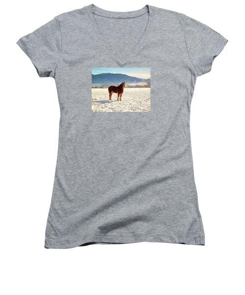 Gus Women's V-Neck T-Shirt (Junior Cut) by Deborah Moen