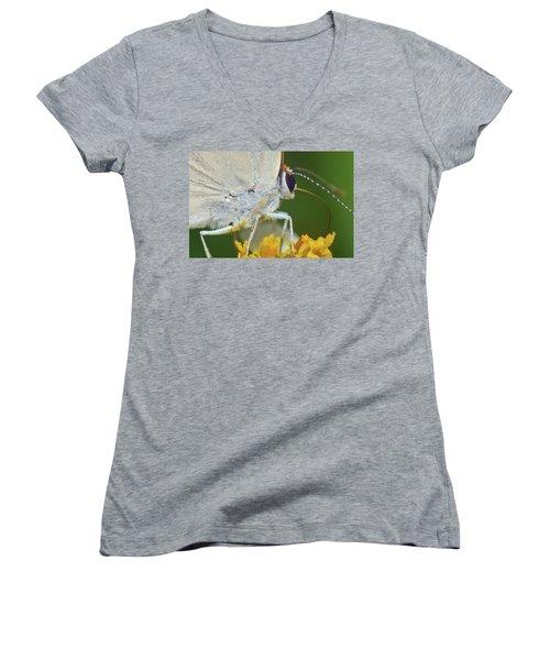 Hairstreak Closeup Women's V-Neck T-Shirt