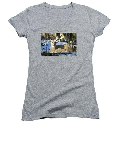 Half A Monster Women's V-Neck T-Shirt