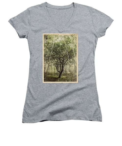 Hand Of God Apple Tree Poster Women's V-Neck