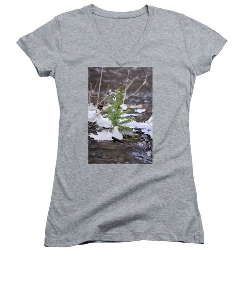 Hanging In There Women's V-Neck (Athletic Fit)