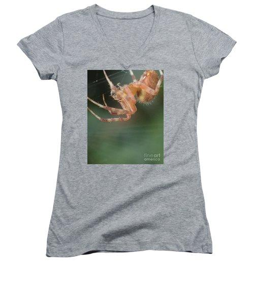 Hanging Spider Women's V-Neck