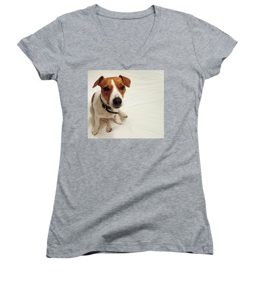 Happiness Is A Cute Puppy Women's V-Neck