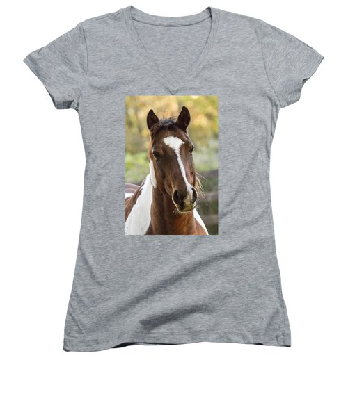 Happy Horse Women's V-Neck (Athletic Fit)